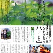 ・【青汁通信】掲載 「無農薬栽培・オオバ(アオジソ)①」
