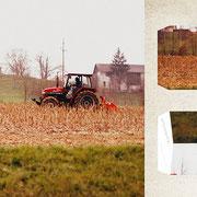 グラーツ郊外「冬に備える畑」11月、訪れる厳しい冬に向けて、家畜のご飯になる草を刈り取る。彩度の低い景色の中、真っ赤な車が音を立てて畑を走る。
