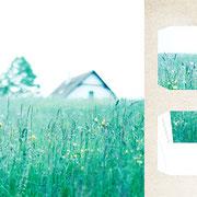 グラーツ郊外「春が来た朝の庭」5月なのに気温が上がらずコートを羽織る日が続いていた。滞在5日目、霧に包まれた朝に気温が上がり春が来た。
