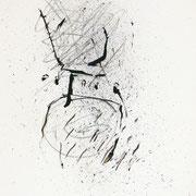 disegno 1998-38x28,2
