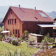 Einfamilienhaus Galsersch in Flums, 1993
