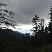 01.08.2014 Das Wetter wirkt immer bedrohlicher - wie vorhergesagt...