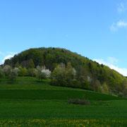 Gräte (Randen Schaffhausen)