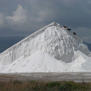 Salzgewinnung