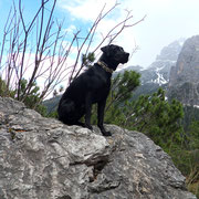Franz beim Urlaub in Osttirol (Mai 2013)