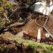 アスレチックの上から見た園庭。右側は泥場・左側の石で囲まれた通路部分はサーキット予定地です。