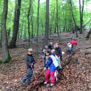 Schatzsuche in Dortmund/Schwerter-Wald