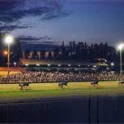Courses de chevaux nocturnes.