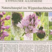 """Artikel in der """"Thüringer Allgemeine""""          Zum Vergrößern anklicken"""
