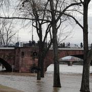 Main bei Hochwasser 1