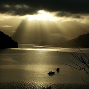Wundervolle Morgenstimmung am Queen Charlotte Sound (Südinsel)