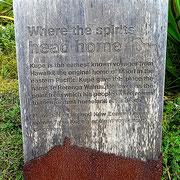Te Rerenga Wairua - von hier aus wandern die Seelen ins Totenreich ihrer Ahnen