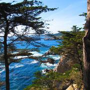 Nach Süden entlang der Pazifik-Küste - Big Sur