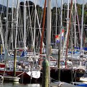 Hafen von Whangarei - Seglerparadies Neuseeland