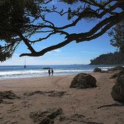 Hot Water Beach. Man gräbt sich eine Badewanne und legt sich in das bis zu 50° heiße Wasser.