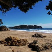Coromandel - Hahei  Beach. Dieser soll zu den schönsten 10 Stränden auf der Welt gehören.