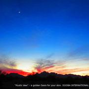 ❦ Arizona aqua caliente road