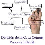 Proceso judicial para la Extinción del Proindiviso