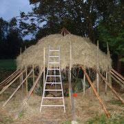 Schicht für Schicht ein neues Dach