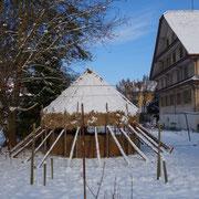Januar 13 - wunderschön im Schnee