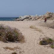 der liebe Sand - zum radeln nicht immer von Vorteil
