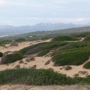 die Sanddünen bei Scivu