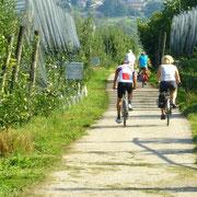 auf dem Radweg von Caldonazzo Richtung Bassano del Grappa