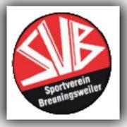 SV Beuningsweiler