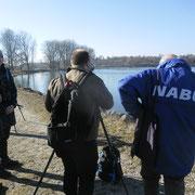Foto: NABU / M. Rösler
