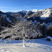 Rodel Grossarl Salzburg Naturrodelbahn