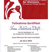 Erste Hilfe Kurs für Hund und Katze