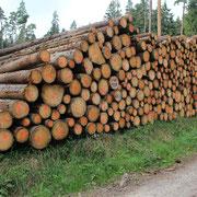 Holzherkunft 2
