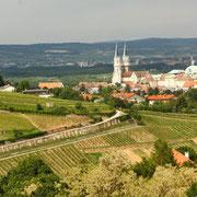 """Blick auf die Weingärten und das """"Schwarze Kreuz"""""""
