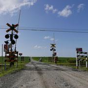 安平町/金麦のCMで使われた踏切(8月下旬)