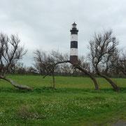 im Park des Leuchtturms