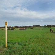 unsere Pipeline am Kloster Andechs