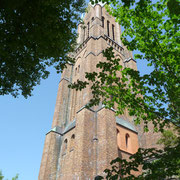 das Wahrzeichen der Stadt Schleswig | weithin zu sehen