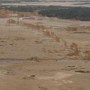 Blick von der Burg auf die Ruinen von Palmyra
