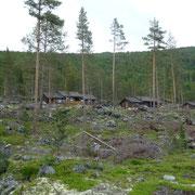 Ferienhäuser im Wald