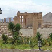 Pause am Hotel Zenobia mit Blick auf den Tempel