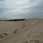 Sand - Sand - Sand | so stelle ich mir die Sahara vor