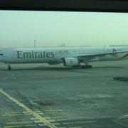 mit Emirates flogen wir Hin und Zurück