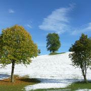 ein schöner Tag mit Schnee und Sonnenschein