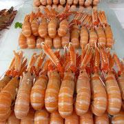 Fischmarkt in Trouville