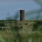 Düne mit dem Wasserturm in der Ferne | Vordergrund Dünengräser