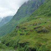 ein Samendorf in den Bergen
