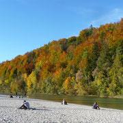 am Ufer der Isar