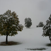 der erste Schnee in Nesselwang