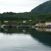 die Fähre bringt uns von den Lofoten nach Skutvik aufs Festland zurück