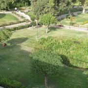 kleiner Stadtpark
